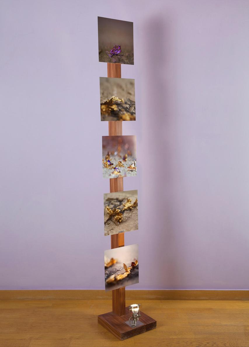 Support acajou / led 30 x 30 x 210 cm 5 Photos tirage sur alu / 30 x 30 cm